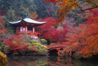 Temple Daigo ji Kyoto Japon